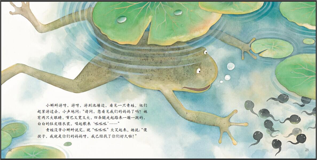 蝌蚪1.jpg